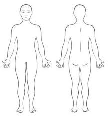 Photo of a genderless naked person, front and back.